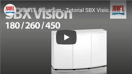 Video Juvel Vision 450